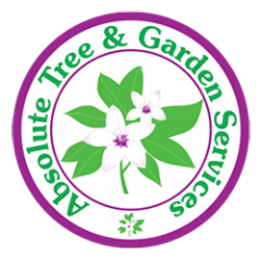 Absolute Tree & Garden Services