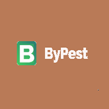 Bypest bypest profile image
