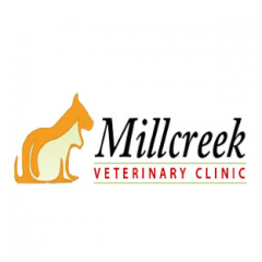 Millcreek Veterinary Clinic profile image