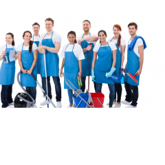 Apartment Cleaning Services profile image