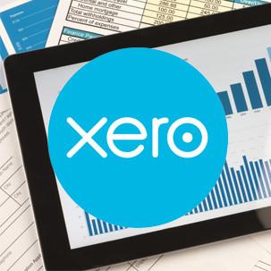 Xero Accounting Support