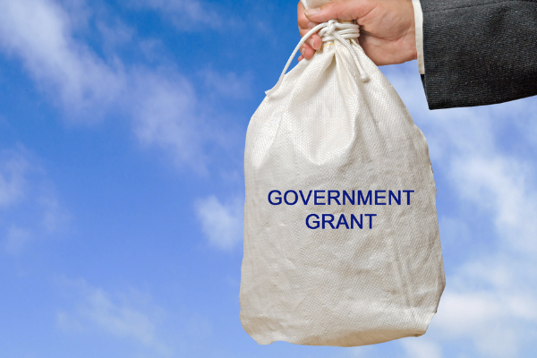 Government grant application